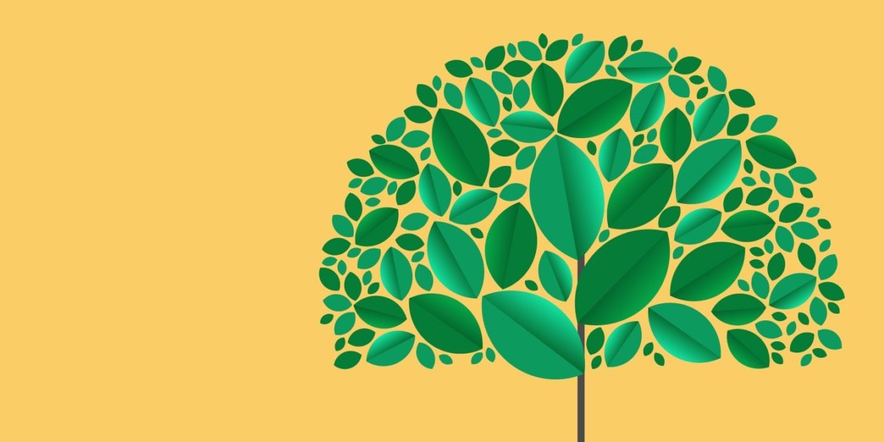 Brands In Focusing on Sustainability for 2020