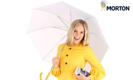 Morton Salt partners with Fun.com