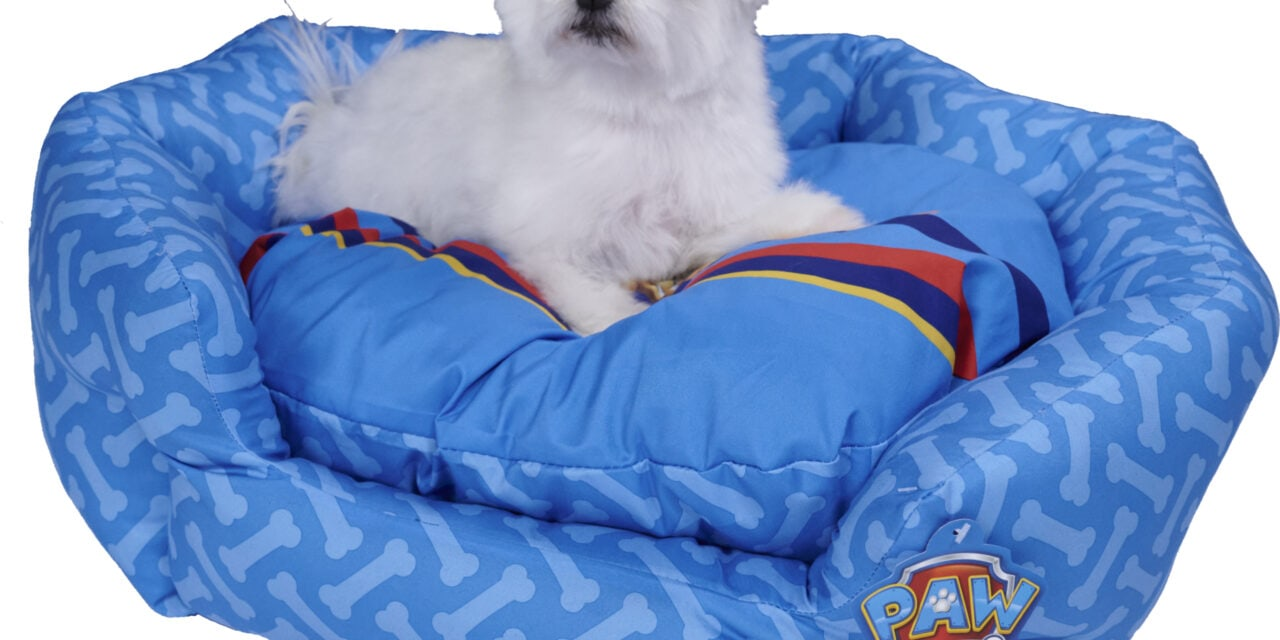 Stylist pets with PAW Patrol Pet Accessories