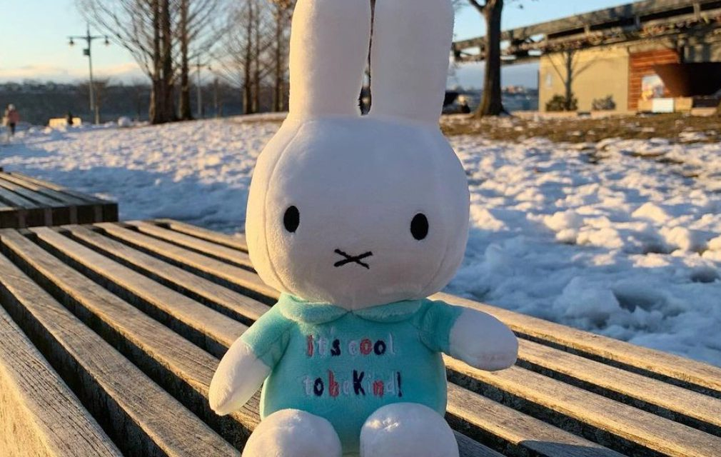 It's Cool to Be Kind with Miffy