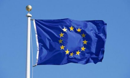 strengths and flaws in the EU's new Import One-Stop Shop