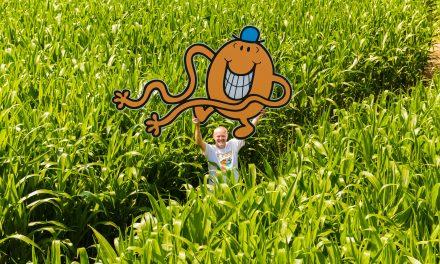 World's Biggest Mr. Men Little Miss Maze to Celebrate 50th