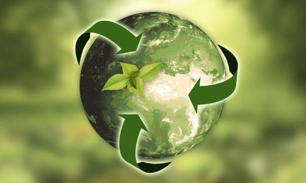 Sustaining Sustainability