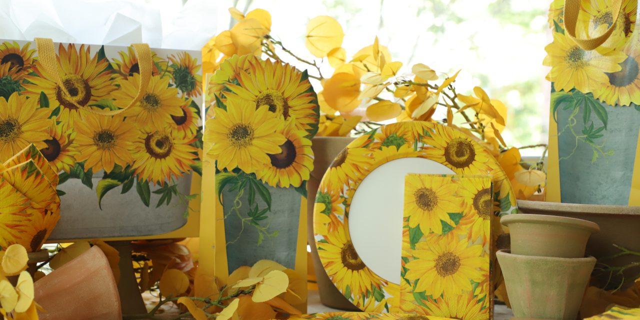 RHS and Caspari present the Sunflowers range